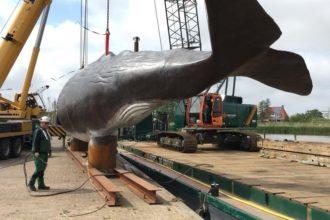 SENNEBOGEN 1100E podnosi 17-tonowego kaszalota w porcie Harlingen